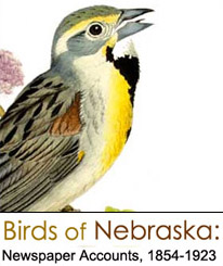 Birds of Nebraska